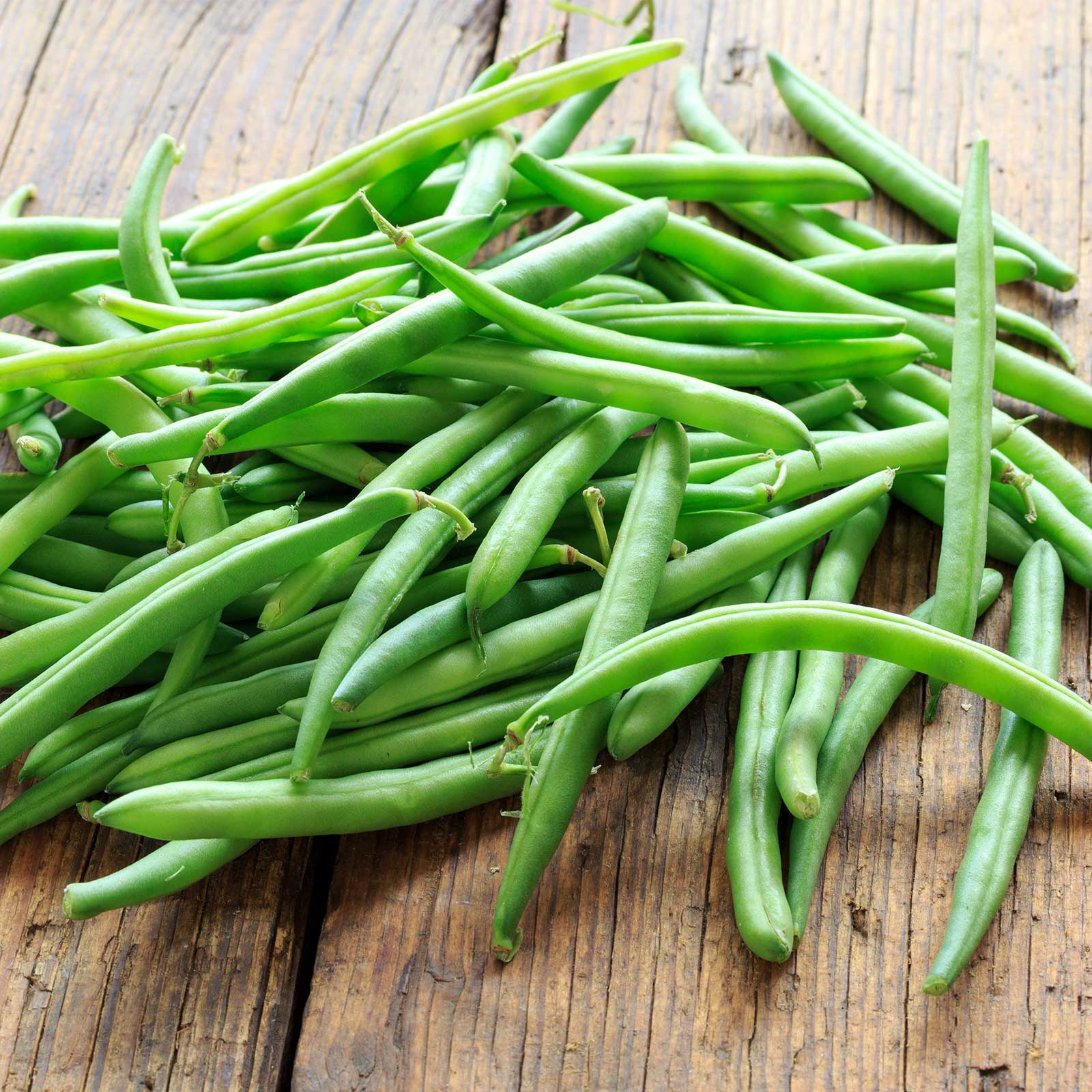 Blue lake bush beans days to maturity