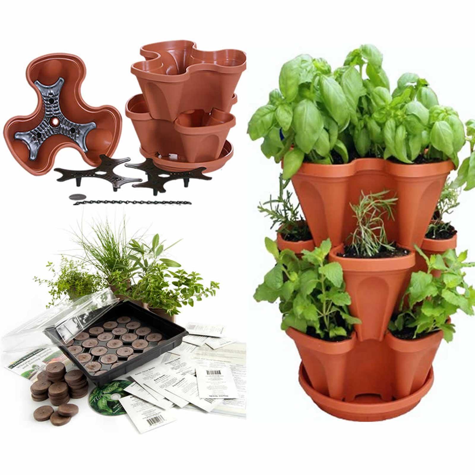 Indoor Culinary Herb Garden Seed Starter Kit Planter Terracotta